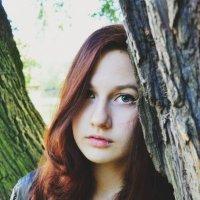 Меж деревьев :: Ксения Михайленко