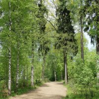 В парке :: Елена Павлова (Смолова)