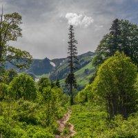 В горах :: Аnatoly Gaponenko