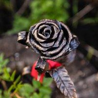 железная роза :: Андрей Иванов