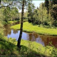 места моего детства... :: Владимир ( Vovan50Nestor )