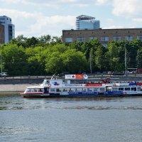 Вид на Москву реку с Новодевичьей набережной. :: Татьяна Помогалова