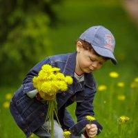 цветы для мамы :: юрий затонов