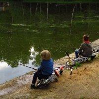 Рыбаки-юниоры :: Андрей Лукьянов