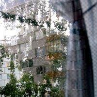 """""""Сюр"""" за  моим  окном....  2 :: Валерия  Полещикова"""