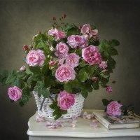 Сага о диких розах :: Ирина Приходько