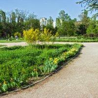 Наш парк! :: Варвара