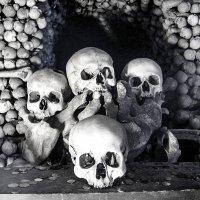 всё суета! :: Александр Липовецкий