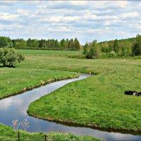 В начале лета :: Leonid Rutov