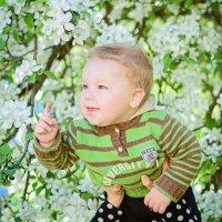 Андрюша в цветущей яблоньке :: Наталья Путилина