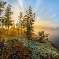 Золотой лес на острове :: Фёдор. Лашков