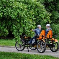 Покатушки в парке.. :: Анатолий Колосов