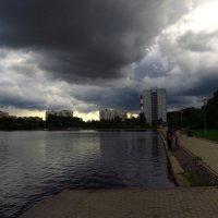 Над седой равниной пруда ветер тучи собирает :: Андрей Лукьянов