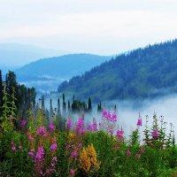 Июльским утром в горах :: Сергей Чиняев