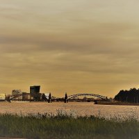 Охтинский мост :: Наталья Лунева
