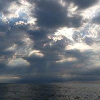 Морское утро :: Swetlana V