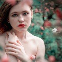 Яблоневый цвет. :: Юлия