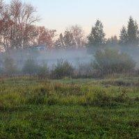 утро туманное :: Ольга (Кошкотень) Медведева