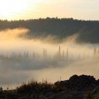 Утренний туман :: Сергей Чиняев