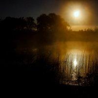 Рассвет в тумане :: Николай П