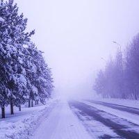 Мороз 51 гр :: Sadi Omarov