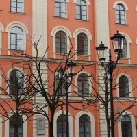 Ожидание весны :: Galina Dolkina