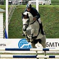 И конь взлетает.  как Пегас :: Vera Ostroumova