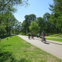 Прогулка по парку :: Вера Щукина
