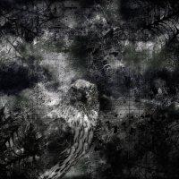 gothic :: Юлия Денискина