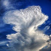 В день наблюдения за облаками, который отмечается 19 июня :: Юрий Фёдоров