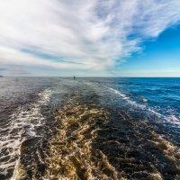 В заливе :: олег