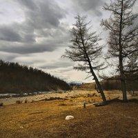 Весеннее путешествие по Тункинской долине... :: Александр Попов