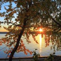 на озере вечером :: Василий И