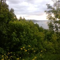Вид на Мызинсий мост через Оку :: Ольга НН