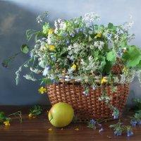 Городские цветы :: SaGa