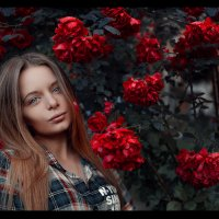 Фотосеесия в Розах :: Павел Тимофеев
