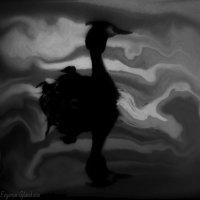 Летающая по воде. :: Evgenia Glazkova