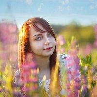 Люпиновое настроение :: Ирина Kачевская