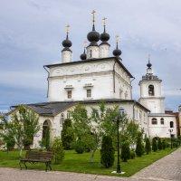 Белопесоцкий монастырь. :: Владимир Безбородов