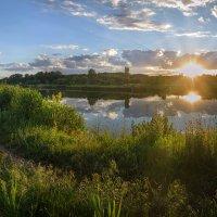 Блики солнца в лучах заката :: Лидия Цапко