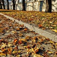 Осень в городе... :: Юрий Яньков