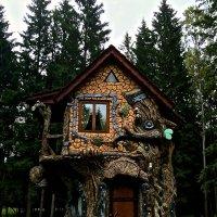 Домик в лесу.... :: Галина Васильева