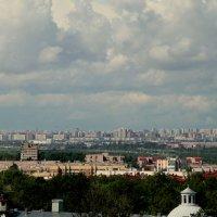 Вид на Петербург. :: Ирина Фирсова