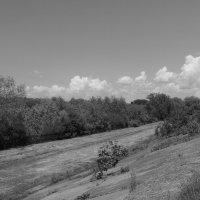Речная   дамба   в   Ивано - Франковске :: Андрей  Васильевич Коляскин