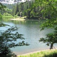 Синевир летом :: Марьяна