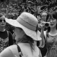 Сингапур. Посетители Ботанического сада :: Sofia Rakitskaia