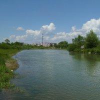 Река   Быстрица    Солтвинская   в   Ивано - Франковске :: Андрей  Васильевич Коляскин