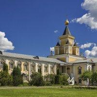 Скорбящинский больничный храм :: Владимир