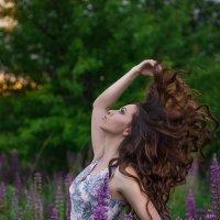 Красота! :: Наташа Шамаева