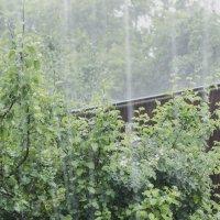 Снимаем дождь! :: Константин Сафронов